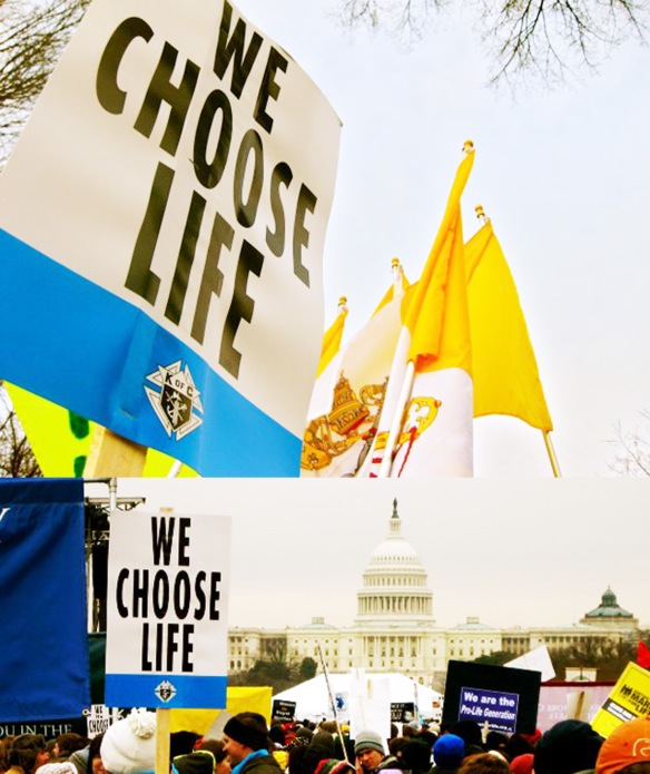 March for Life Preview